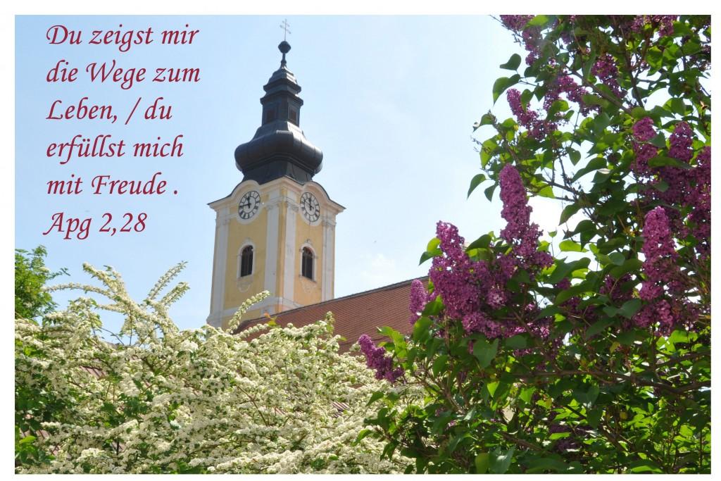 Jahresfoto-2015_bearbeitet-